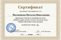 nesmeyanova_natalya_nikolaevna