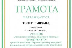 torshin-gto-2020_page-0001